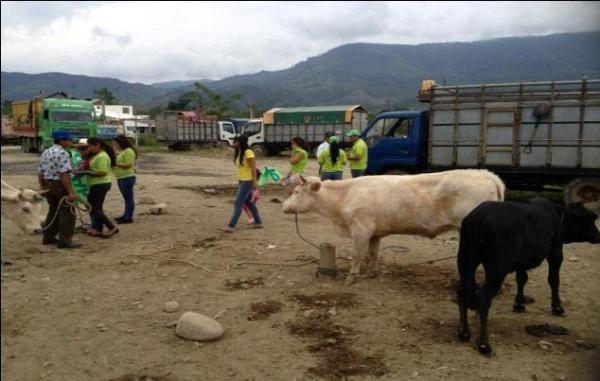 Reporte comunitario - Zamora Ene 2013 - 7